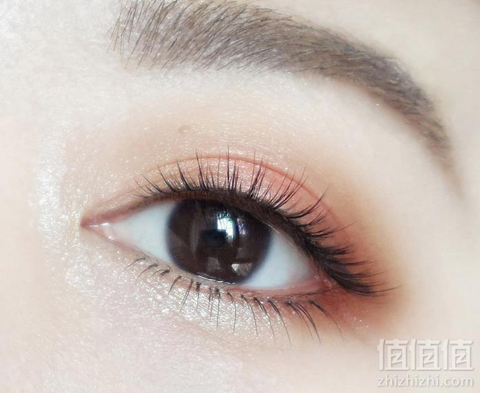 L'Oréal Paris欧莱雅 桃子香氛12色眼影盘65.87元