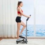 美国 SUNNY HEALTH&FITNESS 豪华扶手扭腰踏步机