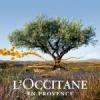 L'Occitane 欧舒丹 蜡菊活颜系列,紧致肌肤、提亮肤色,亮白肌肤看得见!