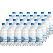 Pocenia 波切尼 天然矿泉水 500ml*24瓶