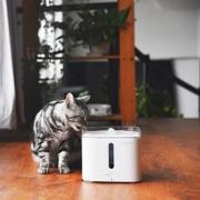 狗狗喝水专用:Petkit 佩奇宠物智能饮水机开箱晒单
