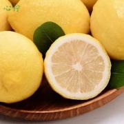 心柠 安岳黄柠檬2斤约9~15个