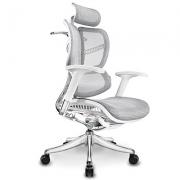 Ergomax Evolution 人体工学电脑椅开箱
