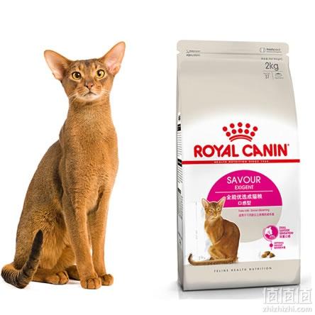 ROYAL CANIN猫粮