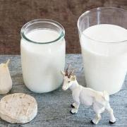 羊奶粉哪个牌子好?10大羊奶粉品牌排行榜