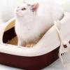 送猫砂铲+逗猫玩具!碧净 半封闭猫砂盆中号    9.9元包邮(需用券)¥9.90 1.8折