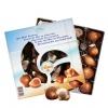 GUYLIAN 吉利莲 埃梅尔系列贝壳巧克力 250g¥39