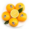 Sunkist 新奇士 美国进口脐橙 12个装 单果重约160-190g28.8元