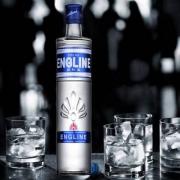 ENGLINE 英吉利 伏特加原味500ml*2瓶装 送酒杯2个