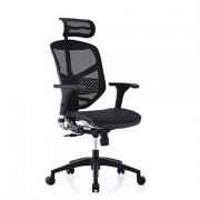 保友办公家具(Ergonor)     金卓B/Enjoy 人体工学电脑椅¥1158