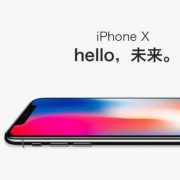 Apple 苹果 iPhone X 256GB