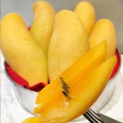 泰果园 泰国大芒果 8斤装