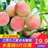 预售 九江瑞昌水蜜桃 5斤 非大棚催熟19.9元包邮