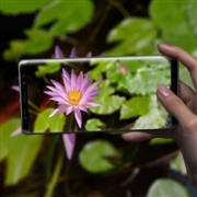 SAMSUNG 三星 Galaxy Note 8 全网通手机 6GB+64GB特价$649.99,转运到手约4240元