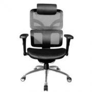 WantHome 享耀家 SL-F3A Plus 人体工学椅 幻影黑