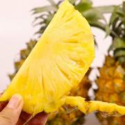 折2.1元/斤!鲜果喜事 菠萝新鲜水果 带箱10斤(净果9斤)¥18.90 3.9折 比上一次爆料降低 ¥1