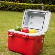 Shinerich 车载/家用 冷暖迷你小冰箱 18L SRT18299元包邮(399-100)