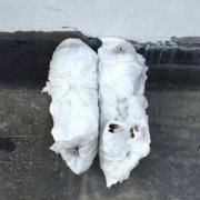 小白鞋发黄如何变白?8个清洗小白鞋妙招
