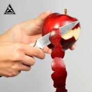 SABER 水果刀 3.5寸 不锈钢 德国进口