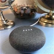 Google 谷歌 Home Mini 智能音箱