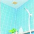 COGIT BIO浴室除霉减湿去味贴特价676日元(约¥41)