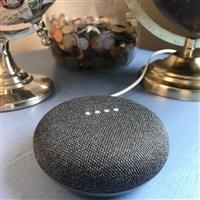 Google 谷歌 Home Mini 智能音箱 两个