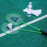 Agnite 安格耐特 FT666 羽毛球拍一对 送三只羽毛球、球包