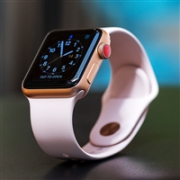 Apple 苹果 Apple Watch Series 3 42MM 智能手表 GPS+蜂窝网络特价$299,转运到手约2145元