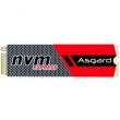 12日0点: Asgard 阿斯加特 AN系列 M.2 NVMe 固态硬盘 256GB 269元包邮269元包邮