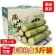 果彩众蔬 陶山青皮甘蔗年货礼盒5斤装24.9元包邮(需用优惠券)
