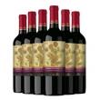 Santa Rita 圣丽塔 国家画廊 典藏赤霞珠干红葡萄酒 750ml *6件 328元包邮(需领券)328元包邮(需领券)