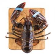 wecook 味库 加拿大龙虾 450-550g 1只 *2件