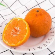 麦柚 衢州椪柑 芦柑 8斤装