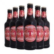 Tennent 替牌 苏格兰艾尔啤酒 组合装 330ml*6瓶 *3件 116.9元包邮(双重优惠,合39元/件)116.9元包邮(双重优惠,合39元/件)