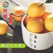鹏瑞达 安岳一二级黄柠檬2斤*2件 单果150~220g