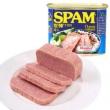SPAM 世棒 经典午餐肉罐头 340g *14个206元包邮(需用券)