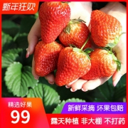 鲜味岭 新鲜现摘 攀西草莓礼盒装 3斤