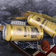 binding 冰顶 白啤酒 500ml*24听 *3件 189.9元