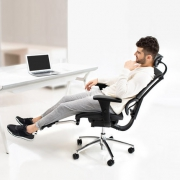 Ergonor 保友办公家具 人体工学电脑椅 优Ioo高配版