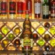 Camino 懒虫 金龙舌兰酒 750ml*6瓶 ¥347.2元包邮57.87元/瓶(双重优惠)