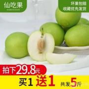 仙吃果 福建漳州牛奶枣大青枣5斤