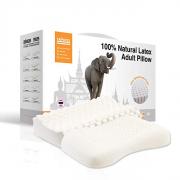 TAIPATEX  乳胶家庭套装(按摩舒适枕+透气护肩枕)