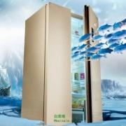 MeiLing 美菱 BCD-650WPCX 650升 变频风冷对开门冰箱