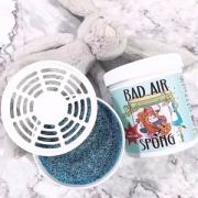 Bad Air Sponge 甲醛污染空气净化剂400g*6罐