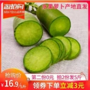 喜乐果园 潍坊青萝卜水果萝卜 5斤装
