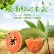 云南新鲜现摘红心甜木瓜9斤装包邮 券后¥23¥23