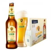 青岛啤酒 全麦白啤330ml*12瓶 赠玻璃对杯78元包邮(需领券)