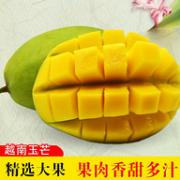 皮薄核小肉甜:越南 大青芒果  3斤