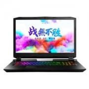 Hasee 神舟 战神 GX10-CR9Plus 17.3英寸游戏笔记本电脑(i9-9900K、32GB、 512GB+2TB 、RTX2080)