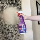 欧洲进口,mootaa 墙体壁纸除霉除菌多功能清洁剂 550ml25元包邮(需领券)